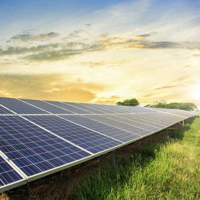 Reptes de la transformació ecològica i la sostenibilitat