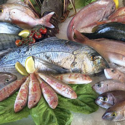 El millor peix per consumir a la primavera