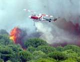 La intervenció aèria ha estat fonamental per controlar els incendis de bon començament