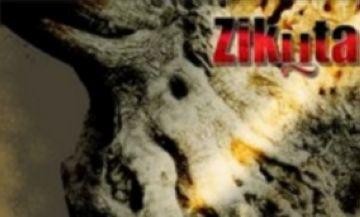 El primer disc dels santcugatencs Zikuta, 'Arrels', a partir d'avui a la venda