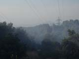 Prop del 40% de la superfície de Sant Cugat és zona forestal