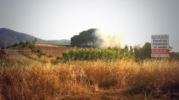 Un foc crema 5.000 metres quadrats d'un descampat al Torrent dels Alous