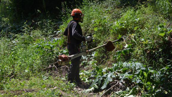 L'EMD neteja el bosc per reduir el risc d'incendi