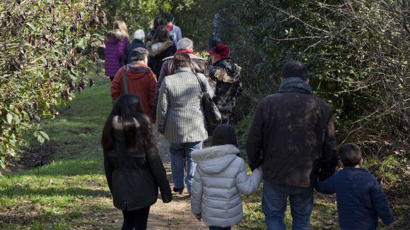Fer activitats al bosc podria tenir efectes positius sobre la nostra salut / Foto: Localpres