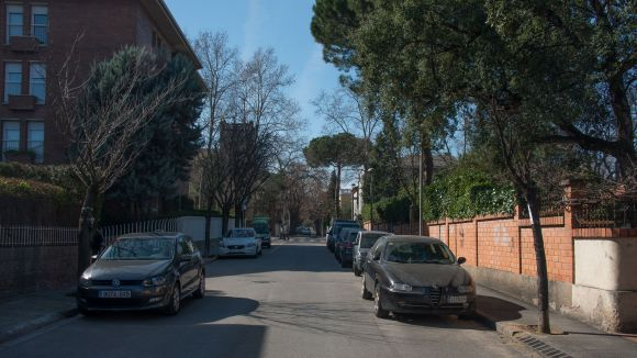 ICV-EUiA porta una instància a l'Ajuntament perquè se'ls informi sobre la substitució de l'arbrat a la ciutat