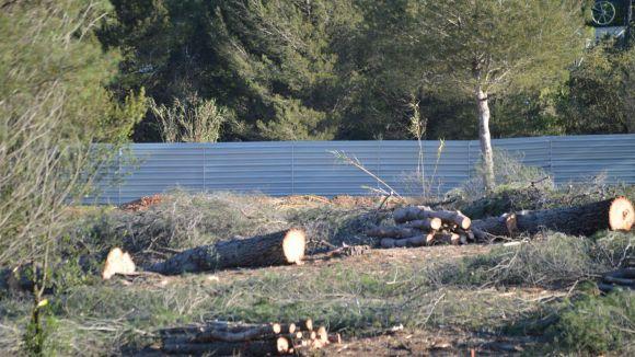 El col·lectiu lamenta la tala d'arbres al bosc de Volpelleres / Foto: Volpelleresviu.com