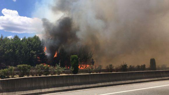 Un incendi crema tres hectàrees de vegetació als vorals de la C-16