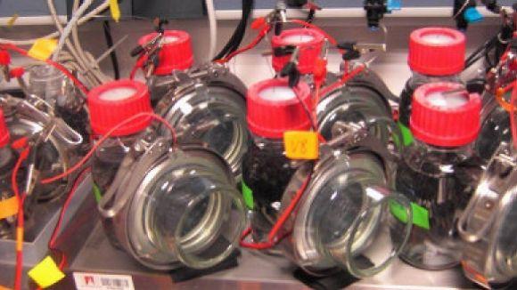 Un projecte que es dedica a descontaminar, eliminar olors i reaprofitar gasos