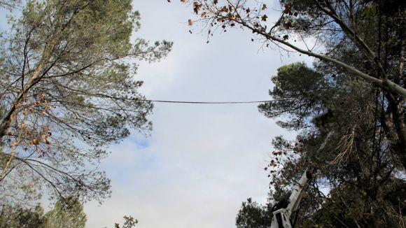 Les passarel·les estan situades a 10 metres d'alçada / Foto: EMD Valldoreix