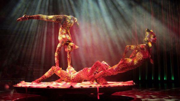 El Circo Italiano arriba avui a Sant Cugat amb l'espectacle 'Salvaje'