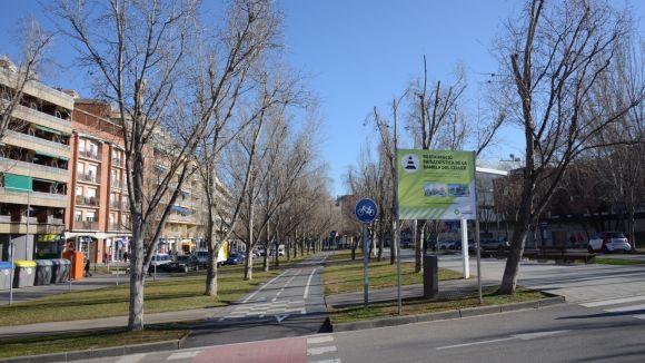 Les obres per a la renovació dels arbres de la Rambla del Celler es reprenen avui