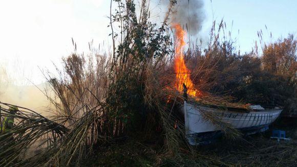 Un incendi crema una zona de canyes prop de Boehringer Ingelheim