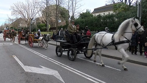 Programa d'activitats de la Festa de Sant Antoni Abat a Sant Cugat