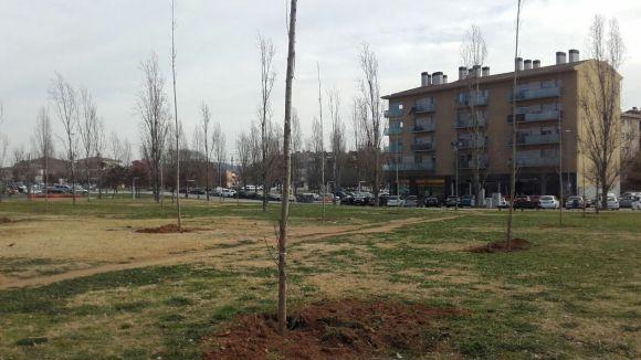 Nous arbres als jardins de Salvador Espriu / Foto: Ajuntament