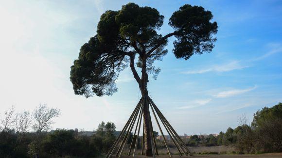 El col·lectiu Pi d'en Xandri +20 proposa aquest dissabte una caminada en defensa de Torre Negra