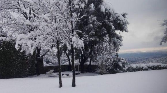 Imatge de la nevada a Collserola / Foto: Marc Tolrà