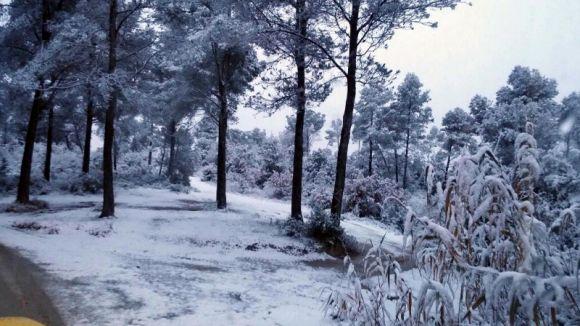 La nevada ha afectat al trànsit de les parts altes del municipi / Foto: Localpres