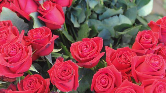 Diverses entitats vendran roses per finançar proejctes / Foto: Localpres