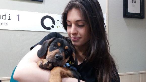 L'equip d'El Cau Amic parla de la importància d'una adopció responsable quan es tracta de cadells