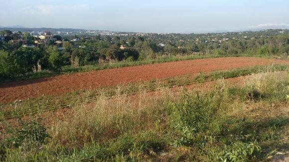 El projecte 'Alimentem Collserola' presenta el Pla d'Acció per un nou sistema alimentari més sostenible al parc