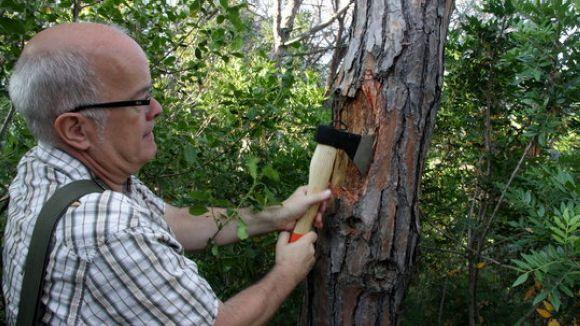 Un projecte per fer servir biomassa per netejar aigua de metalls pesants, a 'El Pou'