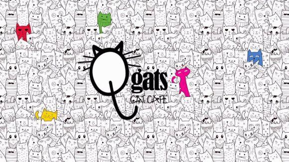 Sant Cugat tindrà la primera cafeteria de gats