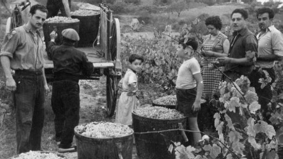 Sant Cugat recorda el seu passat vitivinícola amb la Fira de les Portadores