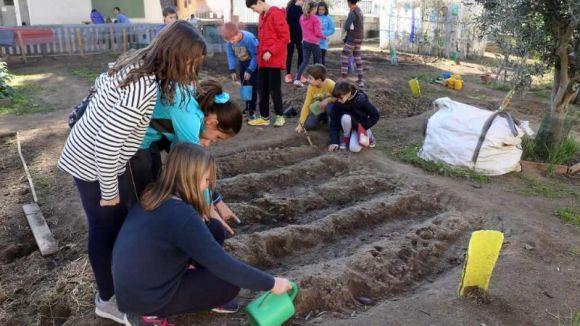 Alumnes de l'escola Pi d'en Xandri / Foto: Web de l'Ajuntament