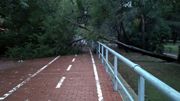 El pas del temporal per Sant Cugat, en imatges