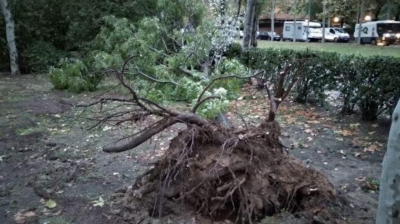 El temporal de pluja i vent deixa a Sant Cugat una vintena d'incidències
