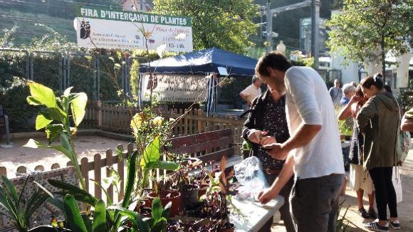 La 10a Fira de l'Intercanvi de Plantes convida els florestans a compartir la passió per la jardineria