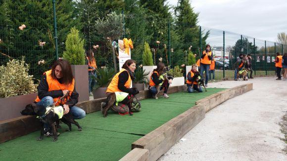Els cadells d'El Cau Amic han desfilat tots junts / Foto: Cugat.cat