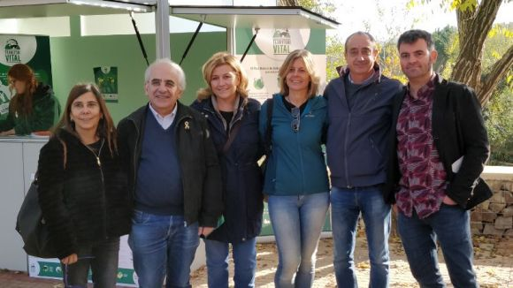 Les millores són fruit de la col·laboració entre l'Ajuntament, el Parc de Collserola i la ciutadania / Foto: Cugat.cat