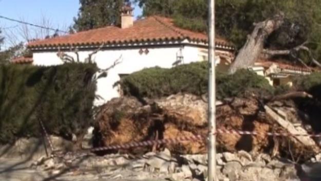 10 anys del vent que va tombar 60.000 arbres