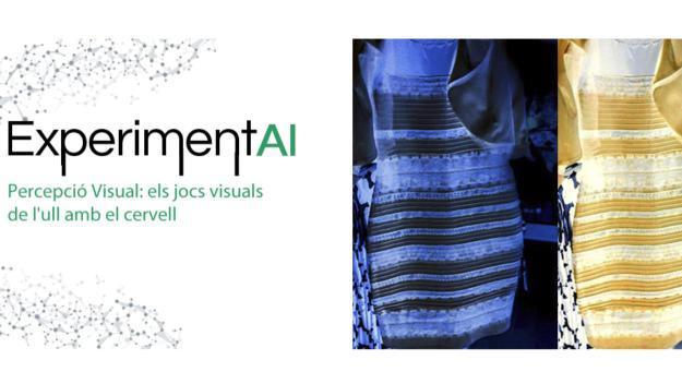 ExperimentAI 13: 'Percepció Visual: els jocs visuals de l'ull amb el cervell'