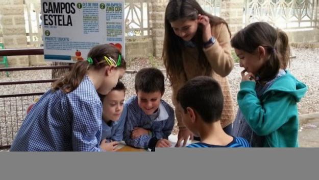 El projecte 'Pesa i Pensa' ajuda a reduir el malbaratament alimentari a les escoles