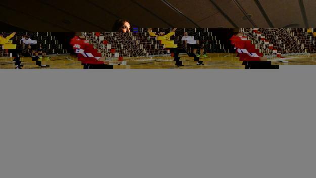 El Ballet Desafío Andaluz ha actuat en la jornada / Foto: Localpres