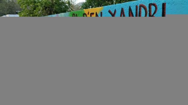 Un mural il·lustra la defensa del Pi d'en Xandri i de l'entorn natural