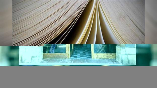Exposició: 'Llibrejant', de Carles Cabanas