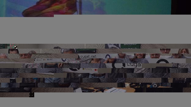 Sant Cugat acull una Diada de les Esquadres que celebra el tricentenari dels Mossos