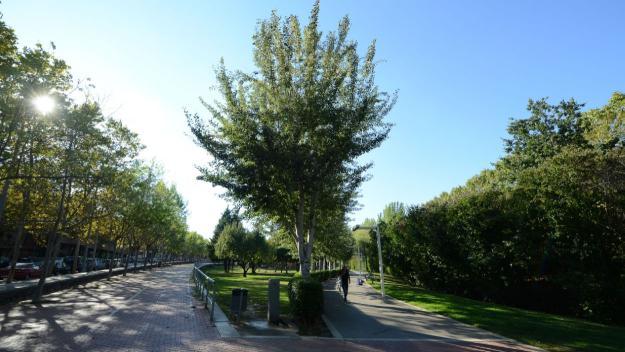 Una imatge d'arxiu del parc Central / Foto: Localpres
