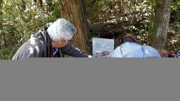 El 15è Bosc Literari reviu el centenari de la Floresta
