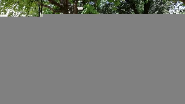 La Festa Major gaudeix dels balls dels Caparrots que enguany celebren 10 anys