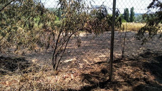 Imatge de la zona afectada / Foto: Mossos