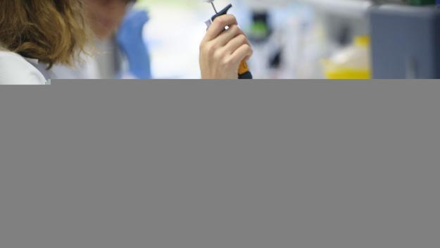 Consumir greixos en períodes curts activa la crema de calories, segons un estudi