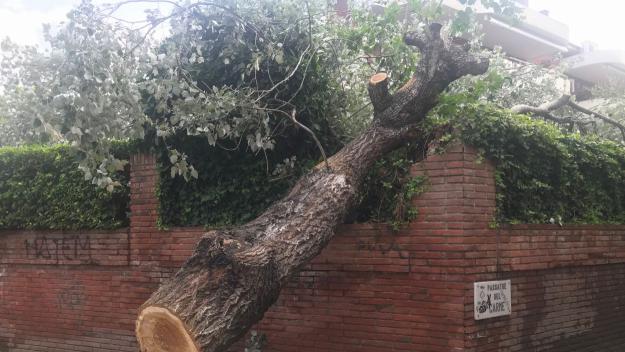 La pluja mobilitza els Bombers en més de 70 incidències