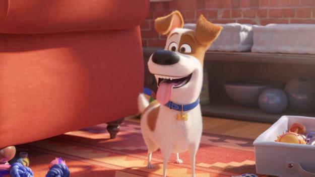 El gos Max torna a la gran pantalla amb l'estrena de la segona part de 'Mascotes'