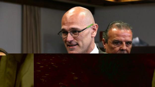 Romeva, condemnat a 12 anys de presó per sedició