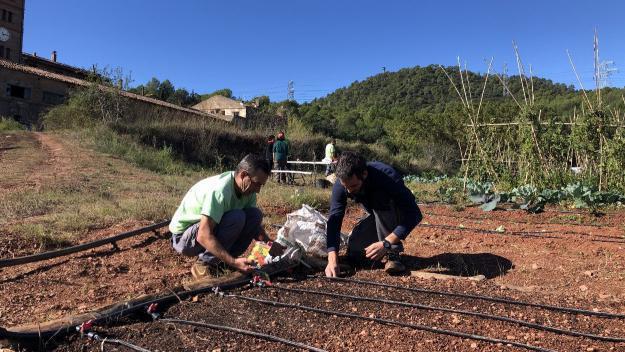 L'Ortiga produeix agricultura ecològica a Can Monmany / Foto: Cugat Mèdia