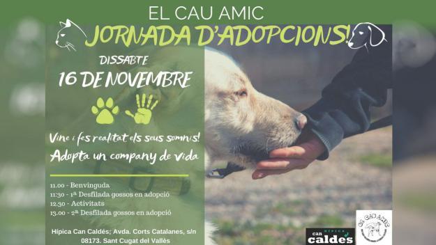 Jornada d'adopcions d'El Cau Amic